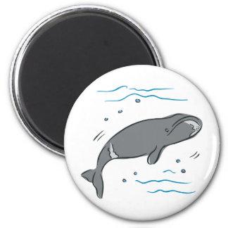Arte del océano de los cetáceos de los mamíferos m imanes de nevera