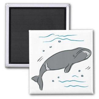 Arte del océano de los cetáceos de los mamíferos m iman de frigorífico