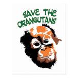 Arte del orangután postales