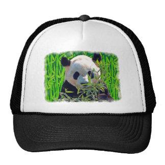 Arte del oso de panda y de la fauna del bambú gorras
