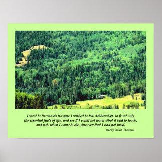 arte del paisaje de la montaña del desierto posters