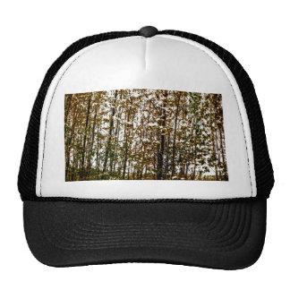 Arte del paisaje de los árboles del otoño gorros bordados