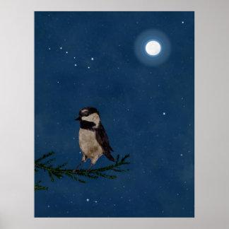 Arte del pájaro, Chickadee, luna, estrellas, cazo Posters