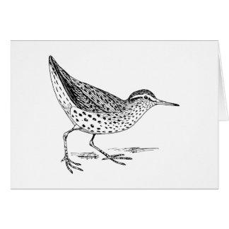Arte del pájaro de la lavandera tarjeta de felicitación