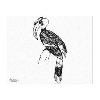 Arte del pájaro del Hornbill Impresiones En Lona Estiradas