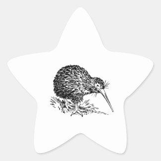 Arte del pájaro del kiwi colcomanias forma de estrellas