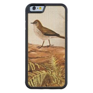 Arte del pájaro del vintage del Ovenbird Funda De iPhone 6 Bumper Arce