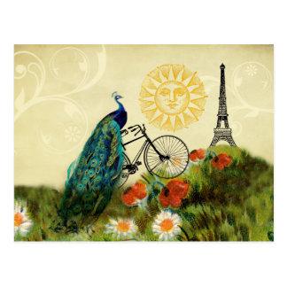 Arte del pavo real del vintage con la torre Eiffel Tarjetas Postales