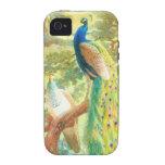 Arte del pavo real del vintage vibe iPhone 4 carcasas