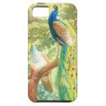 Arte del pavo real del vintage iPhone 5 Case-Mate fundas