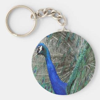 Arte del Peafowl Llavero Redondo Tipo Pin