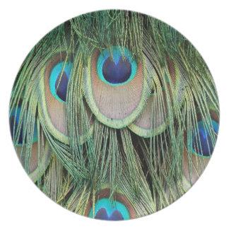Arte del Peafowl Platos