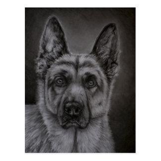 Arte del perro de pastor alemán - noble postales