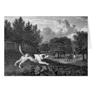 Arte del perro del corredor de cross viejo tarjeta de felicitación