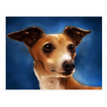 Arte del perro del galgo italiano - Magnifico Postal