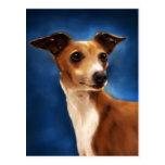 Arte del perro del galgo italiano - Magnifico Tarjetas Postales