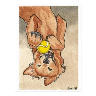Arte del perro del golden retriever de la diversió postal