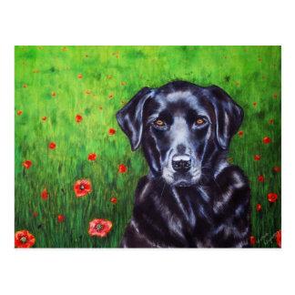 Arte del perro del labrador retriever - amapola postal