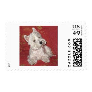 Arte del perro: el Westie Sello