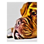 Arte del perro postales