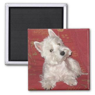 Arte del perro Westie Iman Para Frigorífico