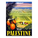 Arte del viaje del vintage de la Tierra Santa de P Tarjeta Postal