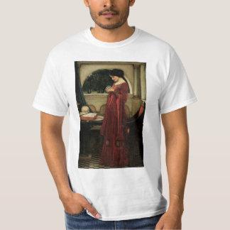 Arte del Victorian del vintage, bola de cristal Camisas