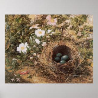 Arte del Victorian, jerarquía de los pájaros y Póster