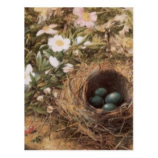 Arte del Victorian, jerarquía de los pájaros y Postales