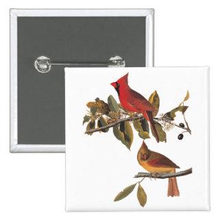 Arte del vintage de la naturaleza de Audubon de Pin Cuadrado