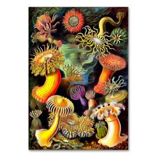 Arte del vintage de las anémonas de mar de Ernst