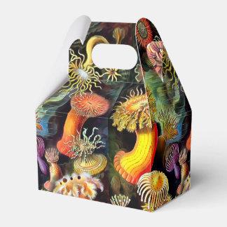 Arte del vintage de las anémonas de mar de Ernst Caja Para Regalo De Boda