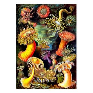 Arte del vintage de las anémonas de mar de Ernst Tarjetas De Visita Grandes
