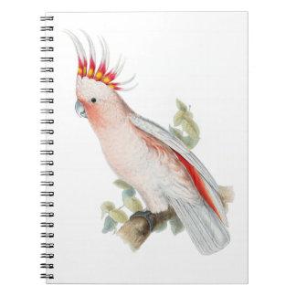 Arte del vintage del Cockatoo Cuadernos
