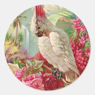Arte del vintage del Cockatoo y de los rosas Pegatina Redonda