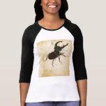 Arte del vintage del renacimiento del escarabajo d