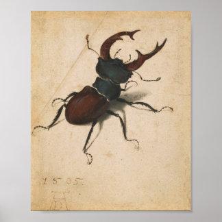 Arte del vintage del renacimiento del escarabajo póster