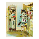 Arte del vintage: Robo cogido gatito Postal