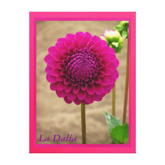 Arte en lienzo Lámina - La Dalia Púrpura Canvas Print