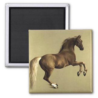 Arte (equino) del caballo del vintage: Whistlejack Imán Cuadrado