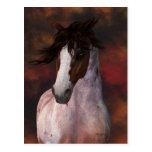 Arte equino, postal del caballo