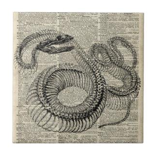 Arte esquelético de la página del diccionario del azulejo cuadrado pequeño