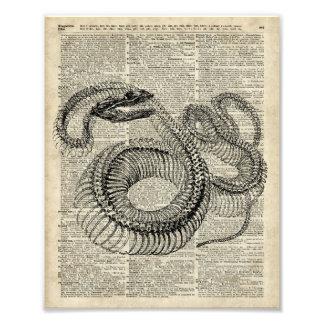 Arte esquelético de la página del diccionario del fotografías