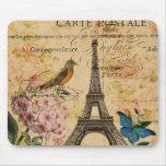 arte floral de París del vintage del pájaro femeni Alfombrilla De Raton