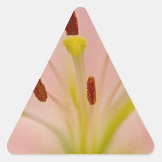 Arte floral del lirio rosado etiqueta
