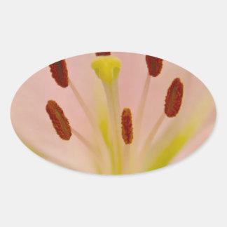 Arte floral del lirio rosado pegatina