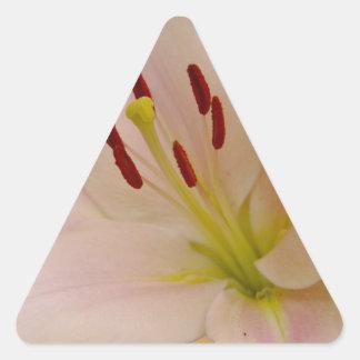 Arte floral del lirio rosado pegatina de trianguladas