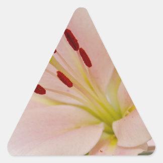 Arte floral del lirio rosado calcomanía trianguladas personalizadas