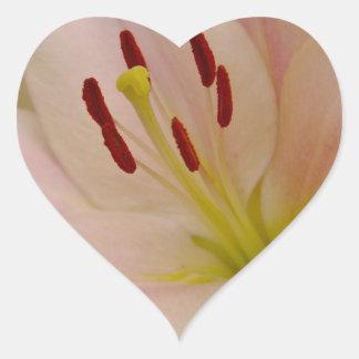 Arte floral del lirio rosado pegatinas corazon personalizadas