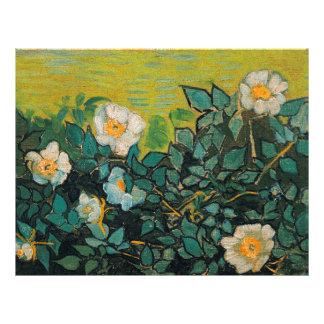 Arte floral del vintage salvaje de los rosas de folleto 21,6 x 28 cm